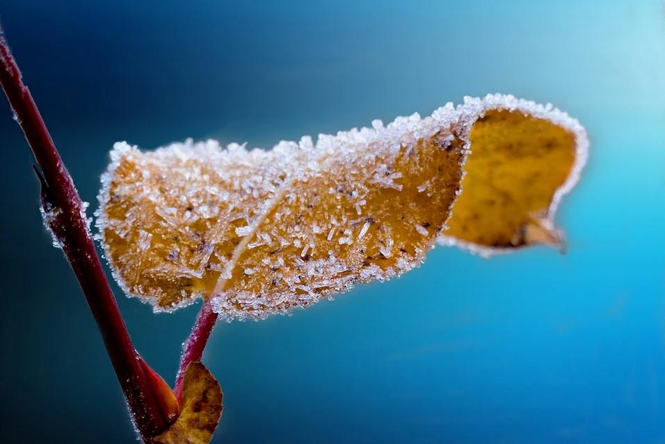 Érden is támad a fagy, vasárnap havazhat is